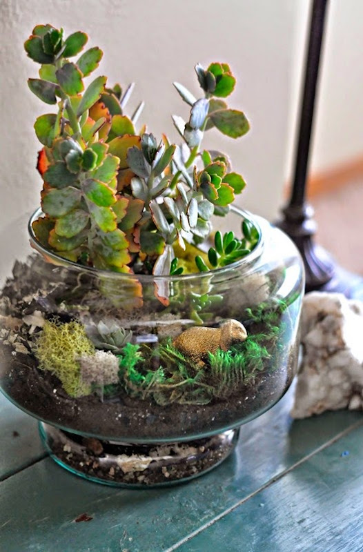 Bunny Terrarium from Fry Sauce and Grits