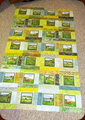 1302241 Feb 27 Top Jim Quilt Finished
