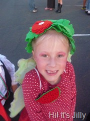 watermelon fairy halloween costume
