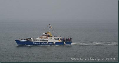 39-boat