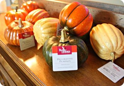 walmart pumpkins