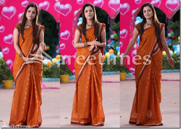 Nisha_Agarwal_Brown_Cotton_Saree