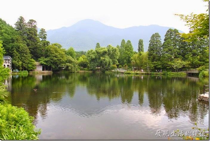日本北九州-金鱗湖。這個角度就是從咖啡館拍攝的畫面。