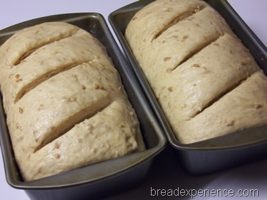 sprouted-emmer-bread 034