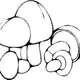 champignon-(25).jpg