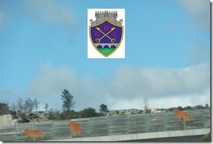 Grupo Desportivo de Chaves regressa à Segunda Liga. Abr.2013