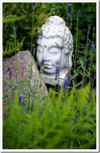 trädgården juli 2011 028