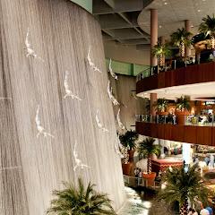 20131129-Dubai2013-04036.jpg
