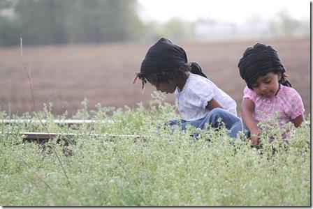 Farming with Daddy 197