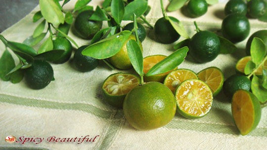 Fresh-Calamansi-Lime