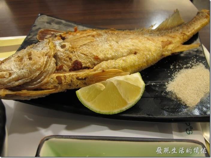 台南-碧蘿春炭索餐坊。香煎黃魚。這黃魚好大一尾,店家一點都不吝嗇,一個人吃實在有點過份的吃不完。