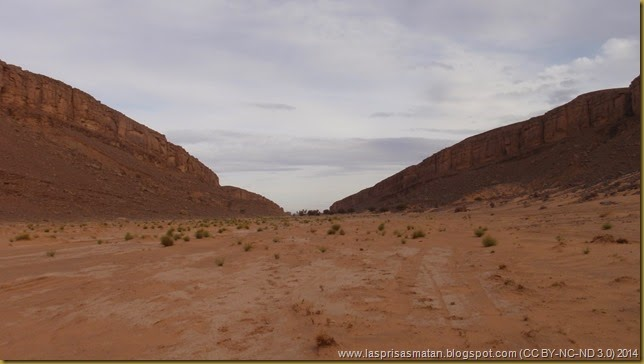Desierto-319
