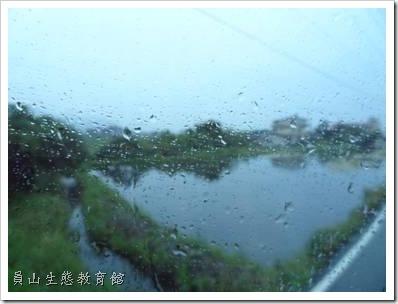 涼爽的小小雨