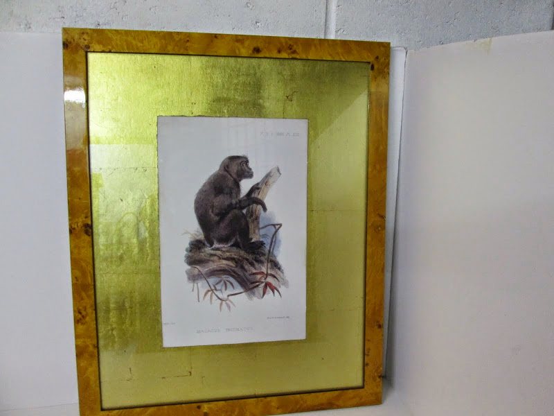 Wolf Monkey Lithograph