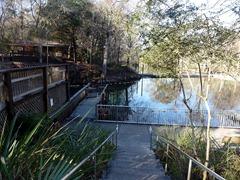 1b - Fanning Springs
