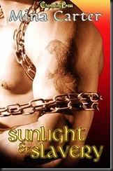 Sunlight and Slavery