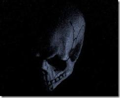 skull[28]