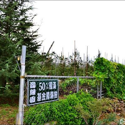 圓緣園,雪松樹,油杉樹繁育場