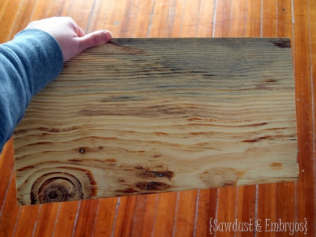 DIY Wooden State Plaque by Sawdust and Embryos