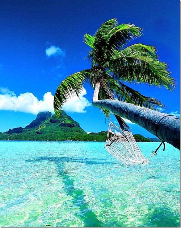 cool-hammocks-relax-25