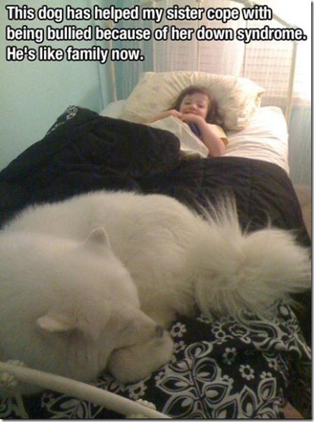 dog-mans-best-friend-13