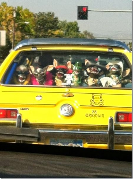 funny-car-pics-031