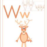 W-(wapiti).jpg