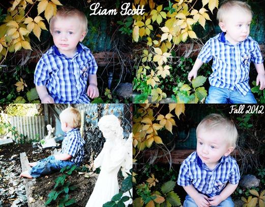 Liam's Mid Fall Photo Shoot