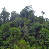 Pulau Sengloiの外観 / The outlook of Pulau Sengloi