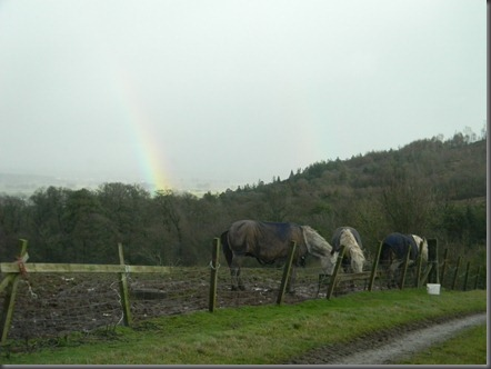 rainbow 012