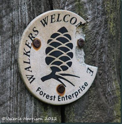 2-Walkers-Welcome