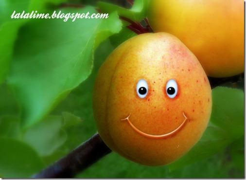 1-Amazing Apricot_Barb Derksen