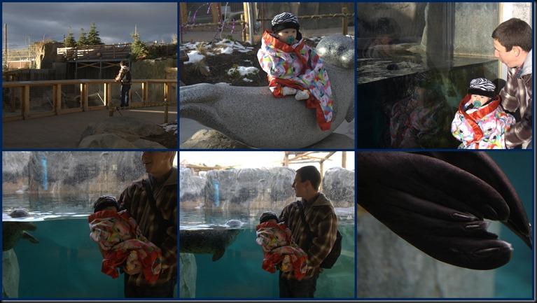 Hogle Zoo1