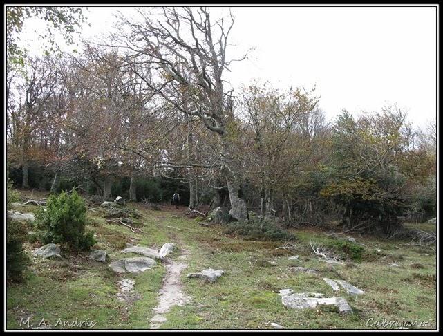Arangoiti-Castellar 049