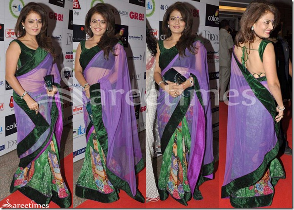 Mahima_Chaudhary_Half_and_Half_Saree