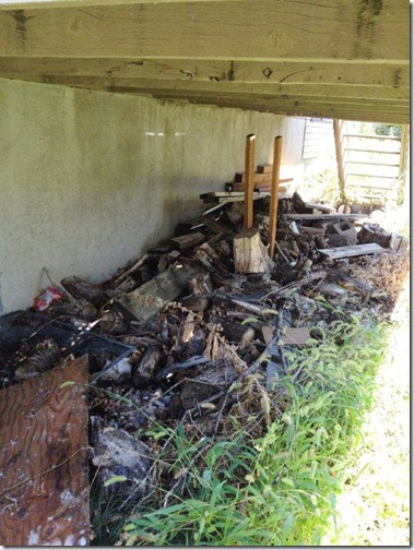 The Mess under the Deck_touch up