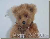 Morton (3)