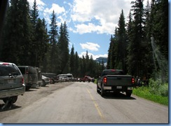 1455 Alberta Akamina Parkway - Waterton Lakes National Park - near end of road we came to this road block