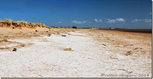 2-Mersehead-Beach