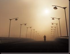 niebla-copia
