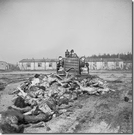 606px-Bergen_Belsen_Liberation_03