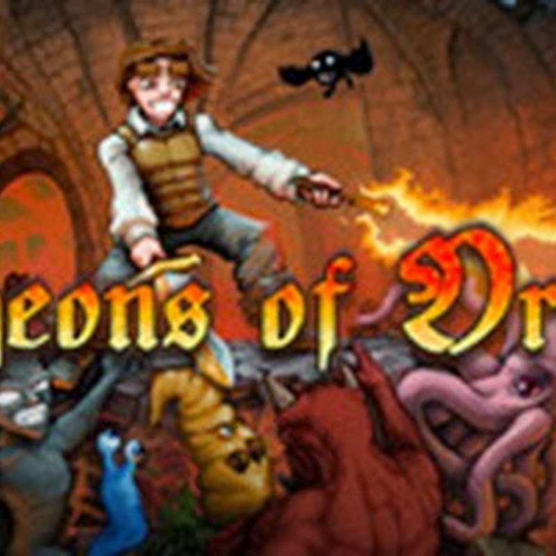 Dungeons of Dredmor is a graphical roguelike game created by Gaslamp Games.