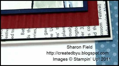 8.dust-of-that-crimper_Sharon_Field