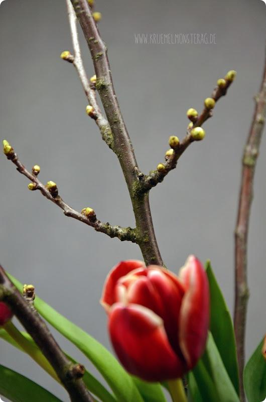 rote Tulpen (05) mit Kirschblütenzweigen am FridayFlowerday