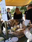 Mikrobiologer från SLU visar traditionell användning av nyttiga bakterier och moderna probiotika som förbättrar tarmfloran. ForskarFredag på Skansen 2011. Foto: Sofia Ljungman, SLU
