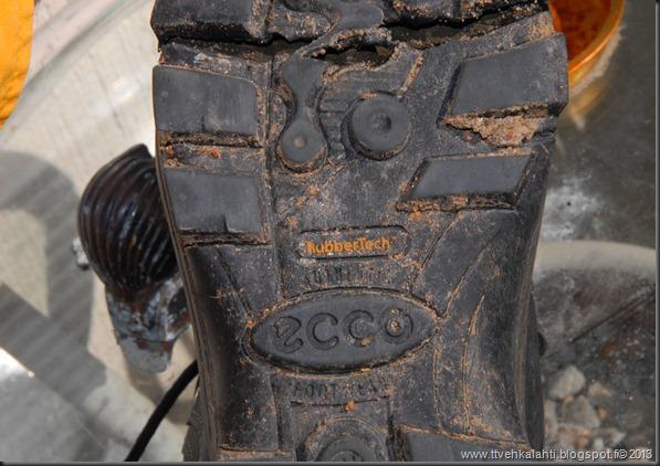 kengät sinivuokot muurahaisa 006