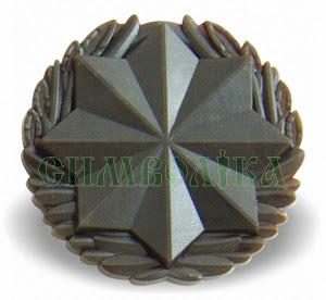Емблема Військо́ва слу́жба правопоря́дку (Н.З. зах)