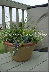 Planting Flowers 002