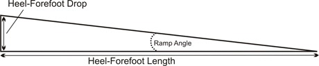Heel Forefoot Measures