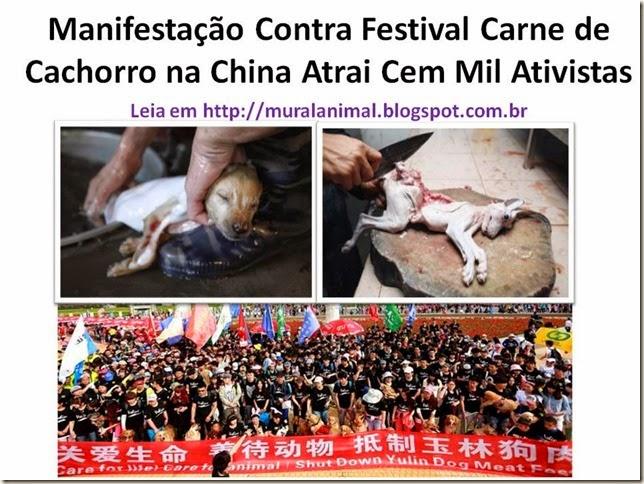 Manifestação Contra Festival Carne de Cachorro